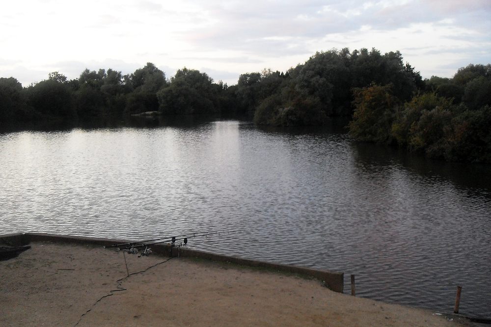View from the 'oak' swim. Plenty of features to pop a bait out to
