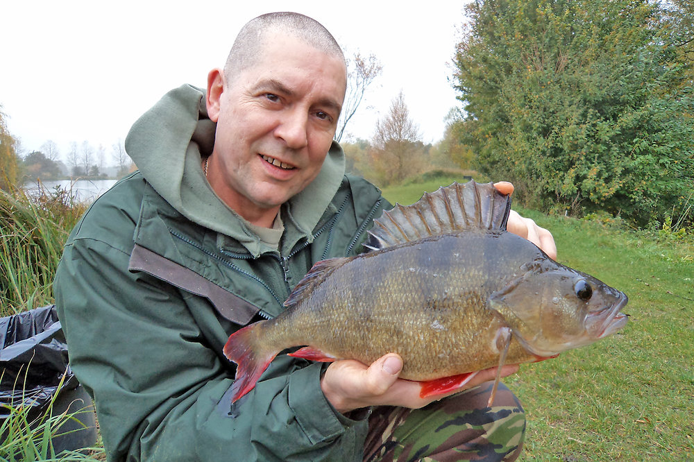 Gary puts a 3lb 5oz perch on the bank at Rib Valley Fishery, the venue holds some quality fish...