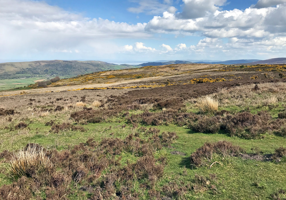 The picturesque view across the Exmoor National Park