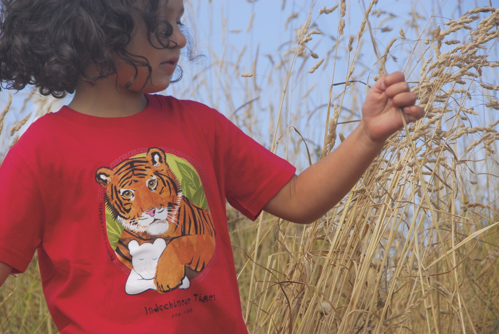 SpeeZees Indochinese Tiger kids tee in  Ladybug .    $1 for One.     $1 from every SpeeZees tee supports:  Panthera .