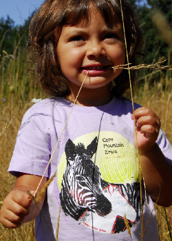 $1 for One.   Support the extraordinary work of  Equid Specialist Group  in South Africa by purchasing a SpeeZees Cape Mountain Zebra t-shirt in  Lavender  or  Yummy Berry .  Made from  100% GOTS certified organic cotton ..
