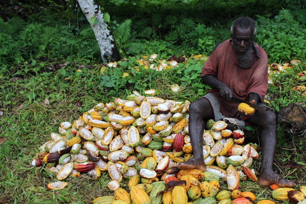 Gabe with the cocoa farmers of the Solomons Islands.