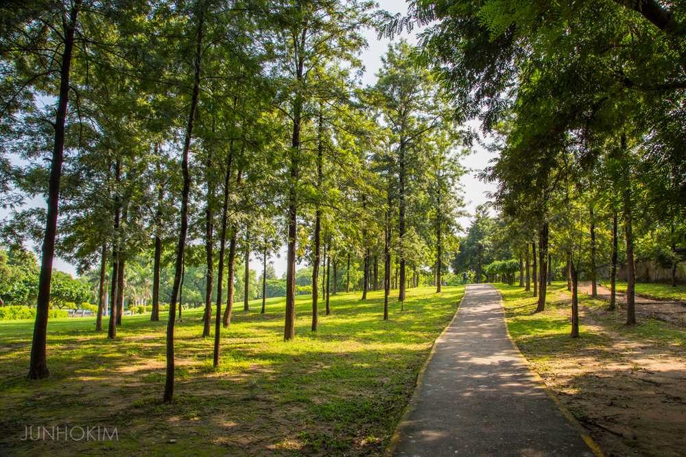 Nehru Park walk path