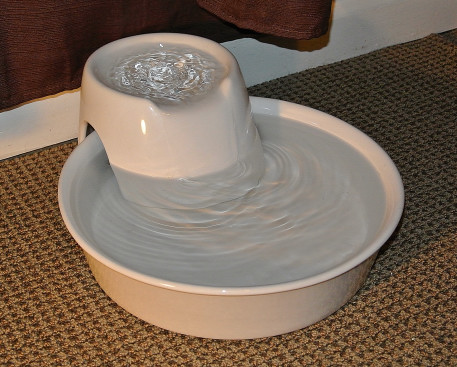 pioneer pet fountain. Pioneer Pet Fountain