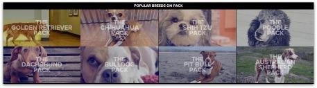 Pack4.jpg