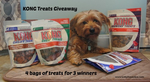 KONG Treats Giveaway