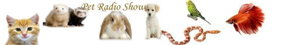 pet radio show header.jpg