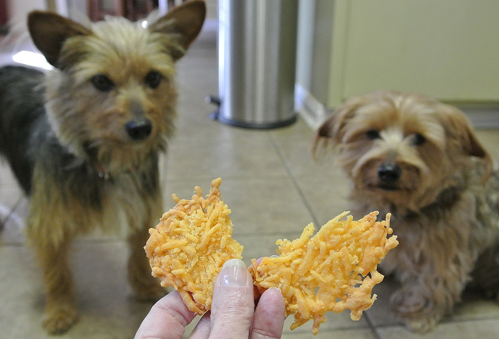 Ezy Cheezy Treats
