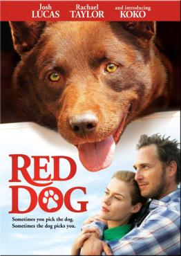red dog.jpg