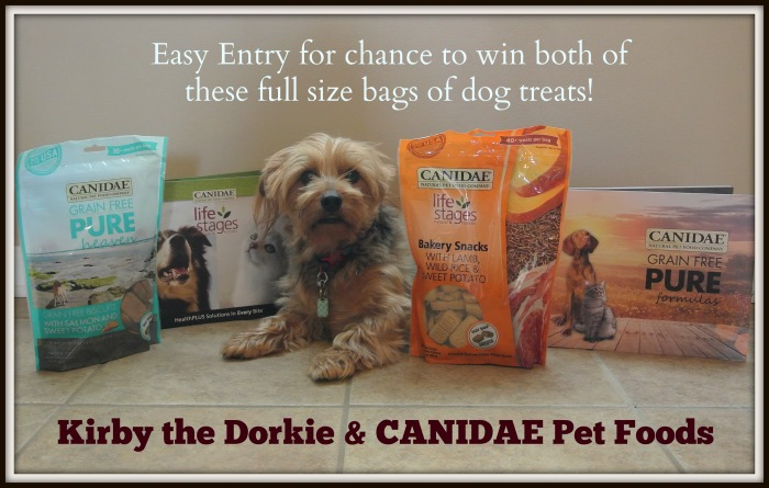 CANDIDAE Giveaway