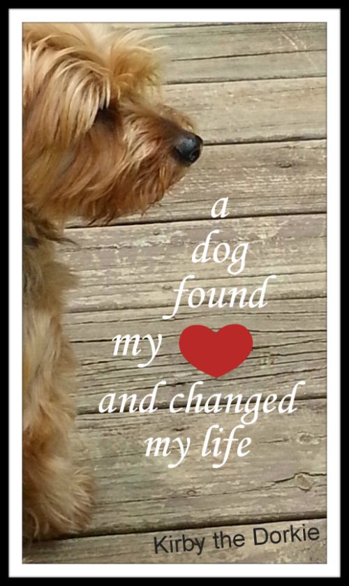 a dog found my heart