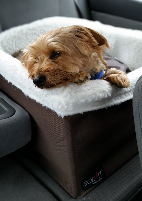 Solvit Pet Safety Car Seat