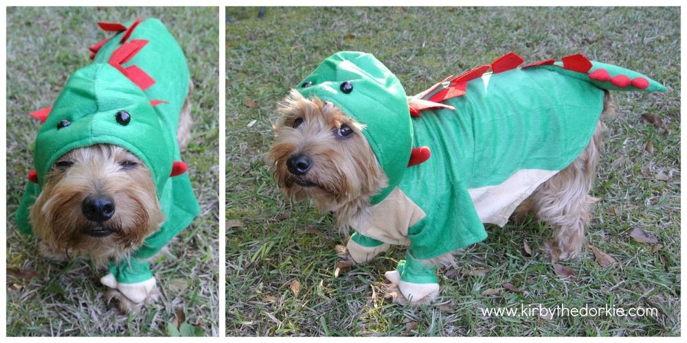 Dogosauras Collage.jpg