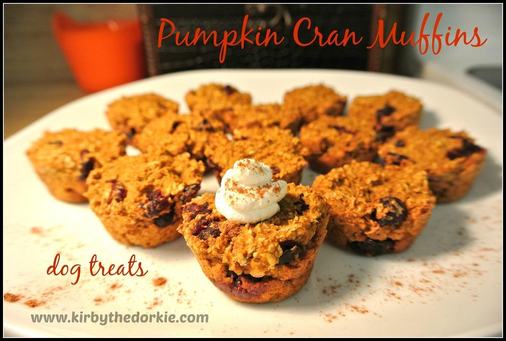 Pumpkin Cran Muffins