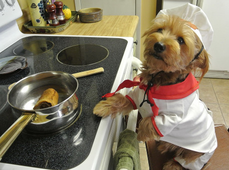 The Canine Chef