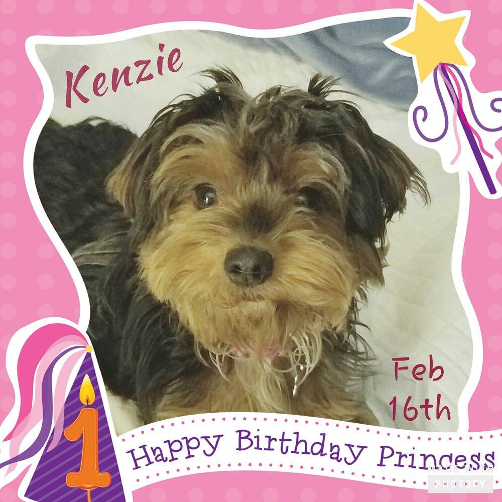 Kenzie is One