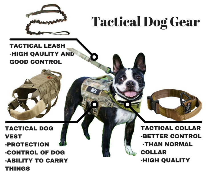 TacticalDogGear.png
