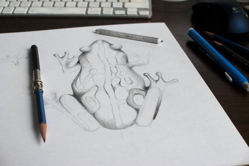 FrogBlog0.jpg
