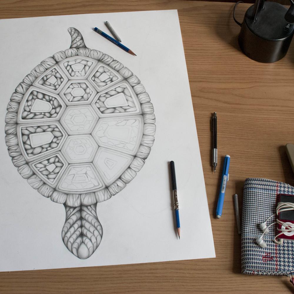 TurtleDrawing5.jpg