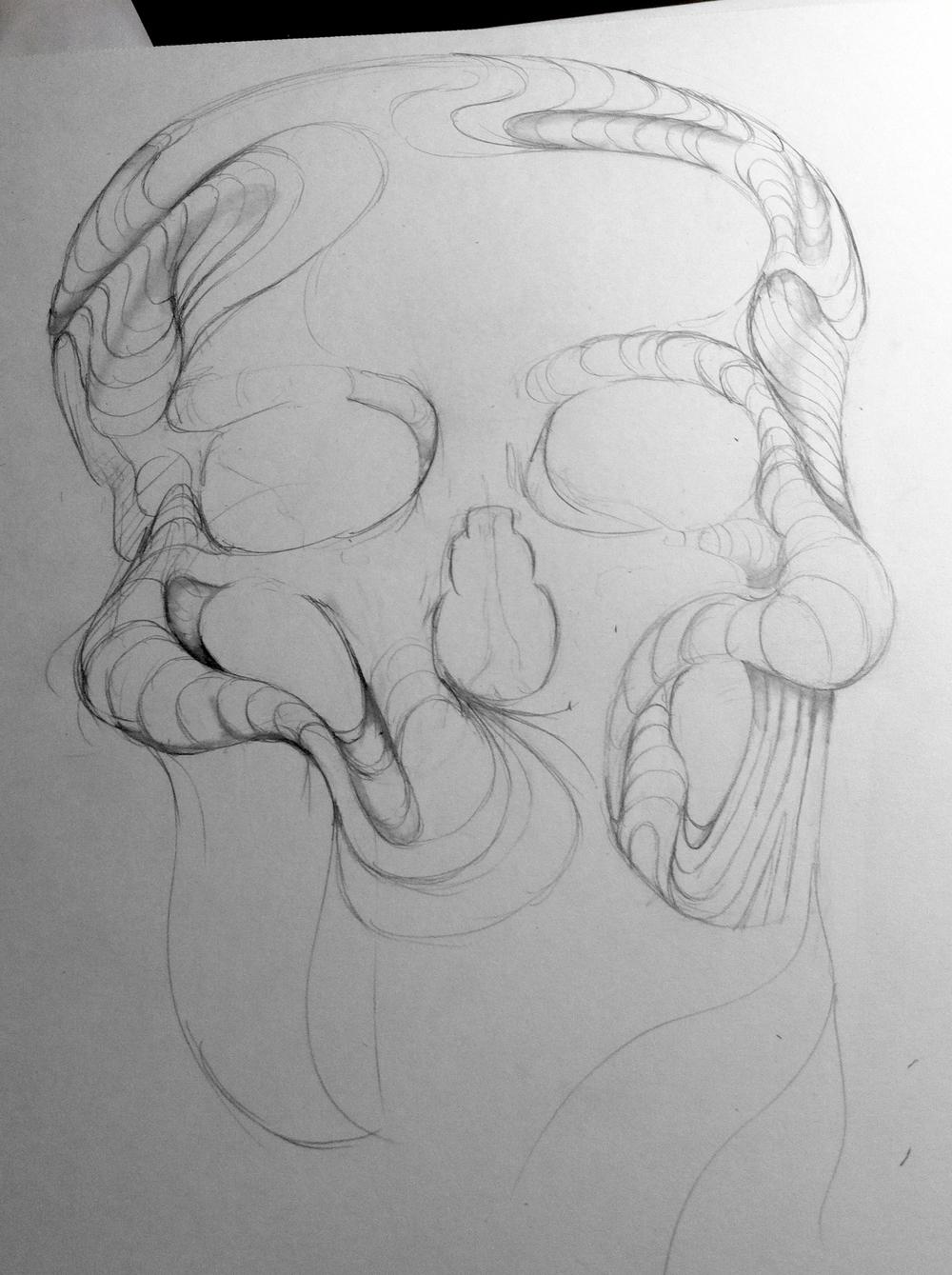 Skull WIP 2.JPG