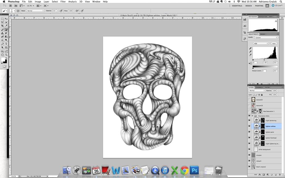 Skull1 WIP C_.png