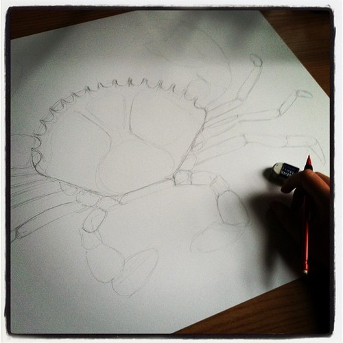 Crab Drawing WIP 1.jpg