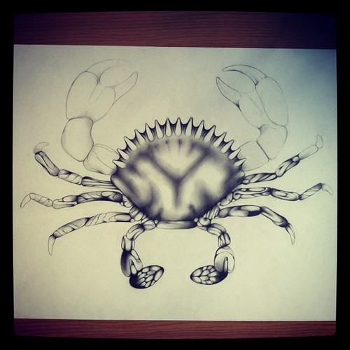 Crab Drawing WIP 4.jpg