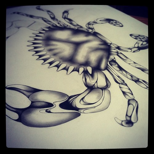 Crab Drawing WIP 5.jpg