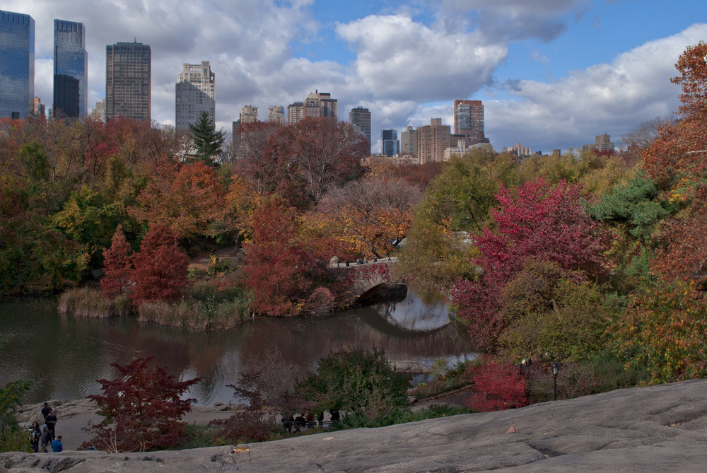 Central-Park-fall-autumn-leaves-NYC-Manhattan