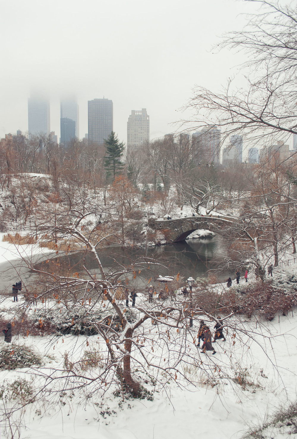 Central+Park+Winter+Snow+2013+1