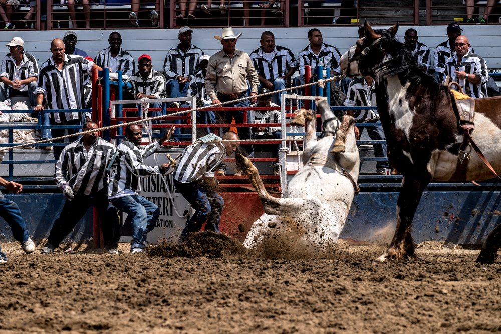 Angola Prison rodeo. 121.8mm at f/8.0 on the X-T1