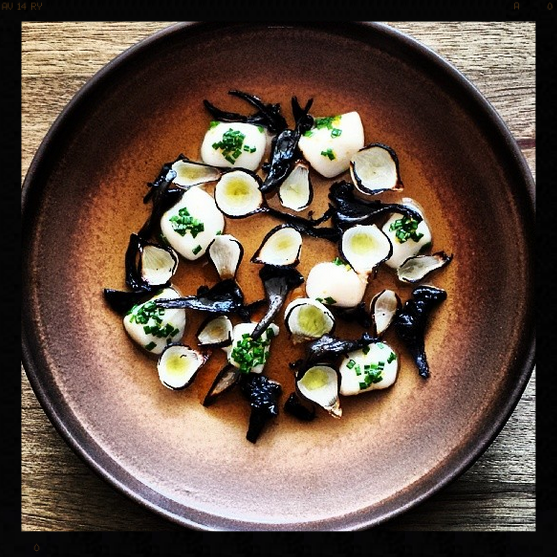Nantucket Bay Scallop Crudo, Charred Onion Petals, Black Trumpets, Pine Oil, Caramelized Whey | Photo Credit: Instagram