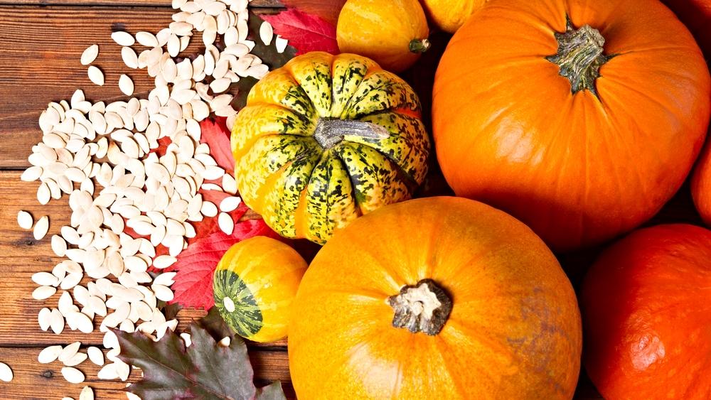 Seasonal Autumn Menus: Pumpkin and More Pumpkin