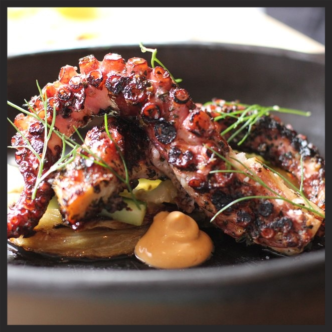 GRILLED OCTOPUS AT VERNICK FOOD & DRINK  | YELP, MICHELLE L.