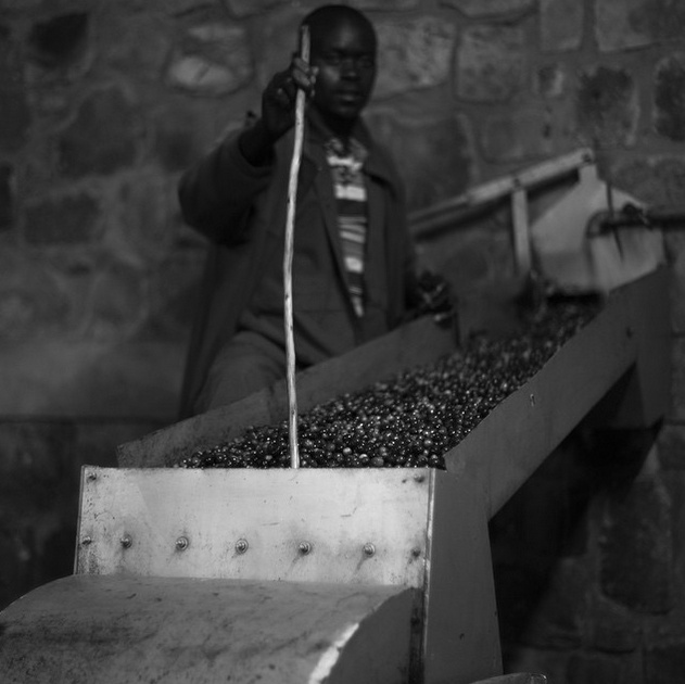 """Night time coffee processing in Rwanda.""  