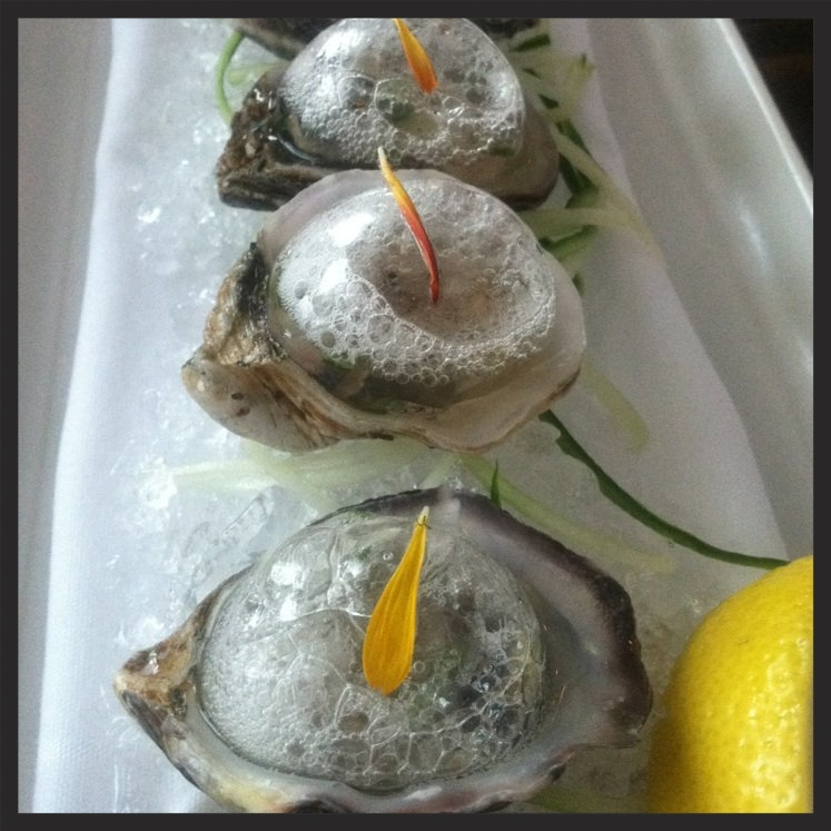 Carbonated Oysters at Tongue & Cheek | Yelp, Carlos L.