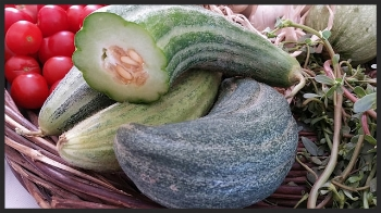 Santorini Cucumbers | Foodable WebTV Network