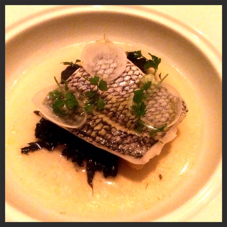 Black bass at Marc Forgione | Yelp, Angela N.