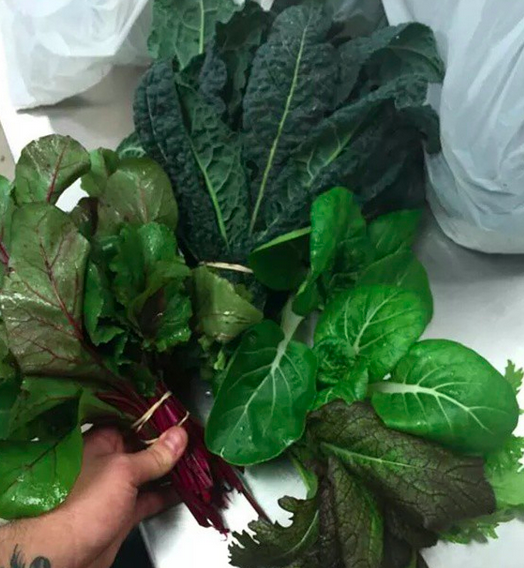 Greens from Cold Frame Farm | Credit: Instagram @themulefootgastropub