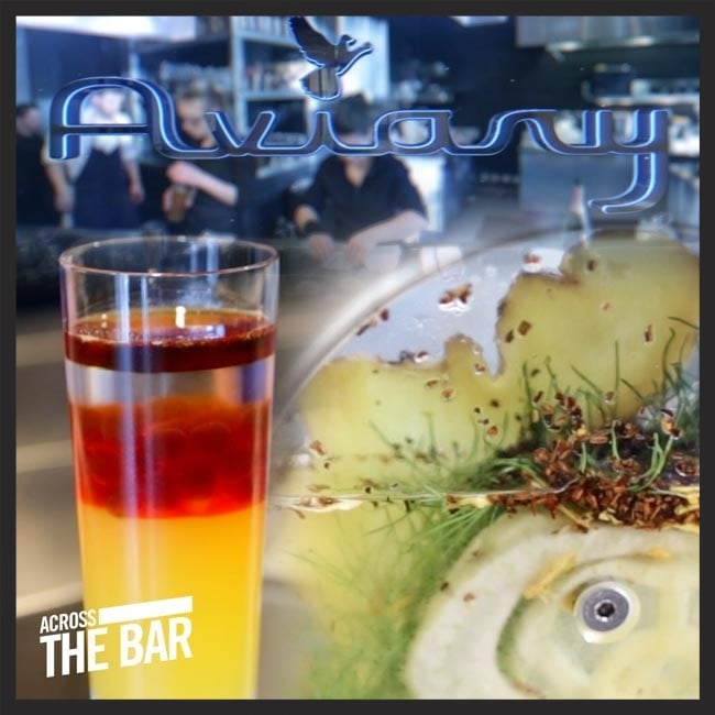 "Check out our full ""Across the Bar"" featuring The Aviary [video]"