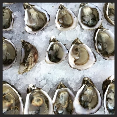Fresh Oysters at Cart Driver |  Facebook