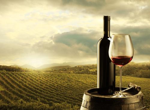 winery red wine.jpg