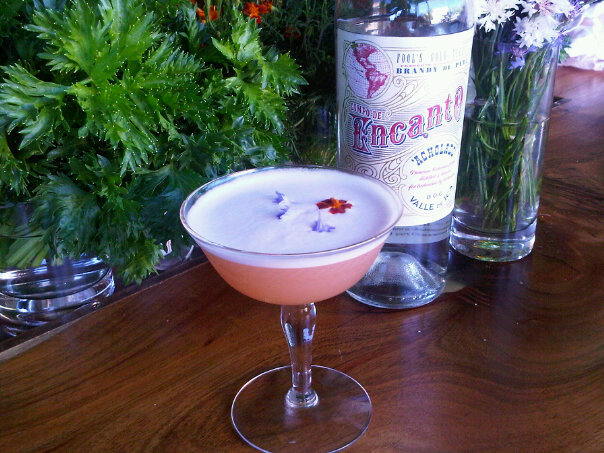 Encanto Sour  |  Photo Courtesy of Encanto Pisco