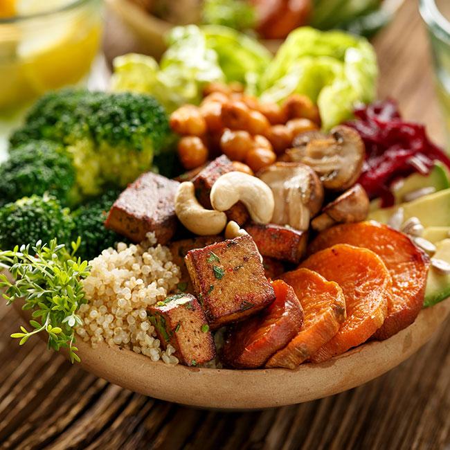 Vegetarian (coming soon)
