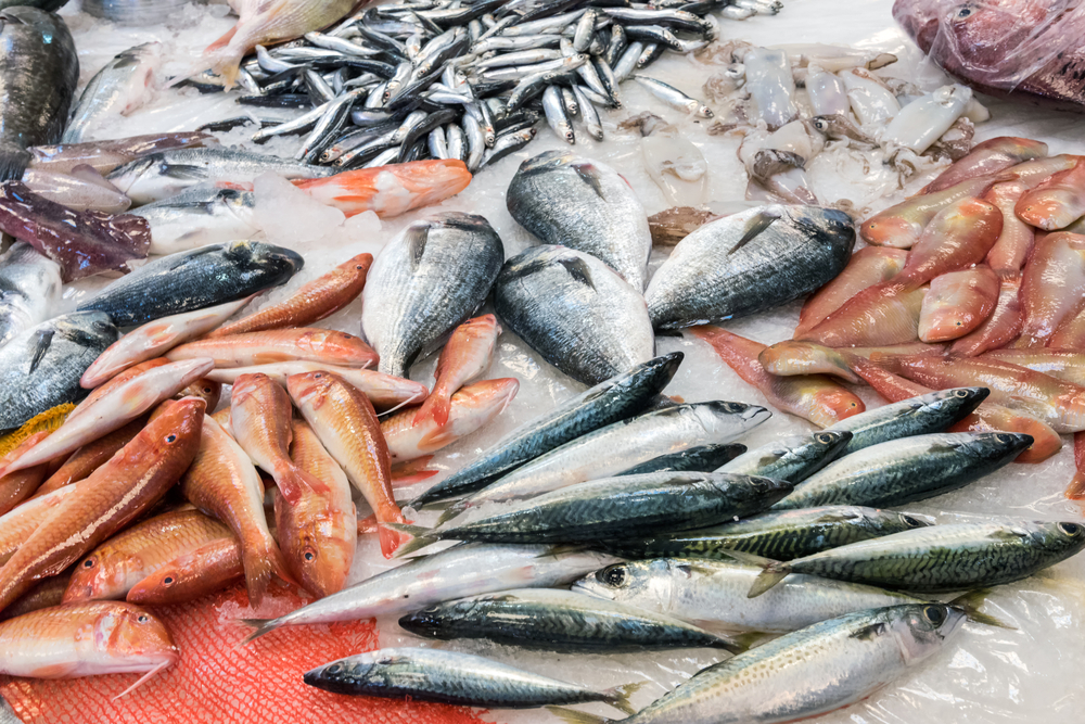 Here's How This Program Will Help to Prevent Illegal Fishing