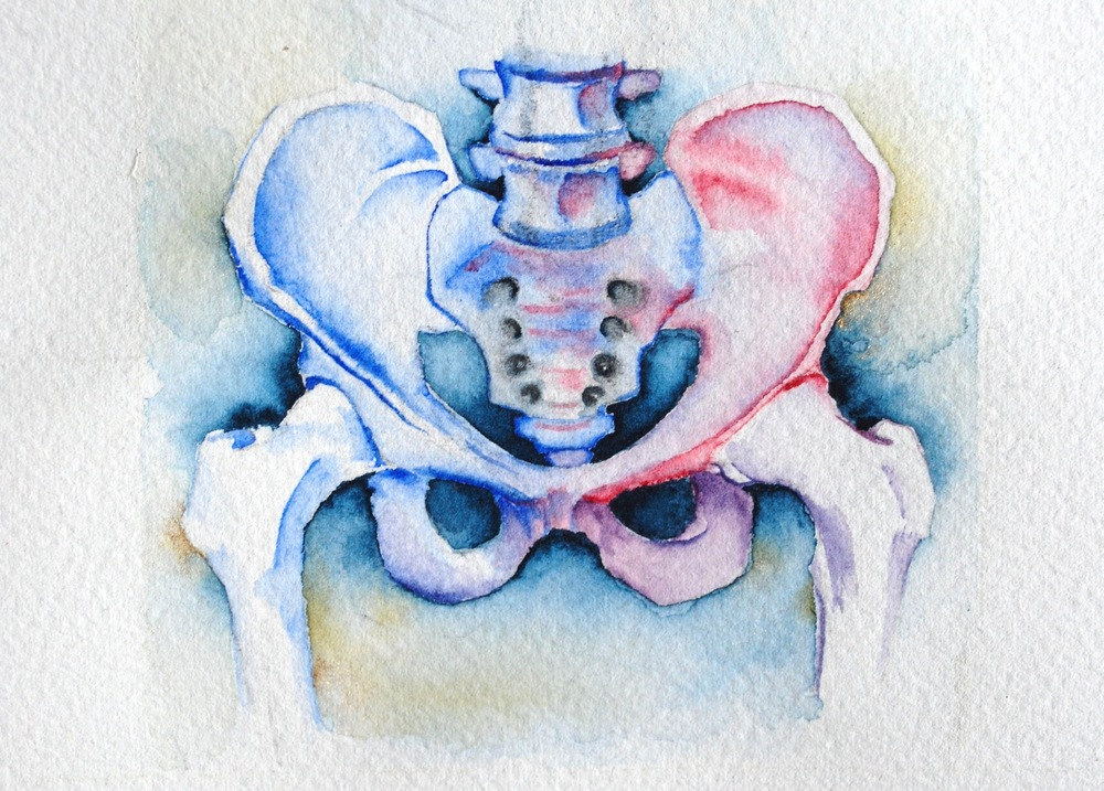 Untitled (pelvis) Cropped.JPG