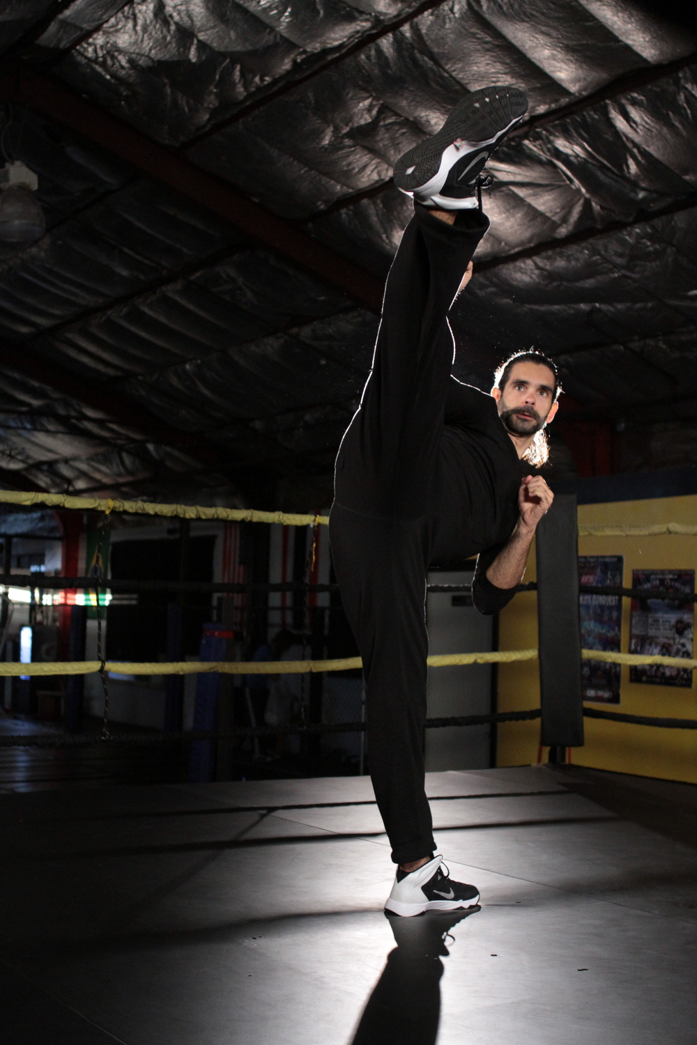 Guillermo Gomez doing a Roundhouse Kick.