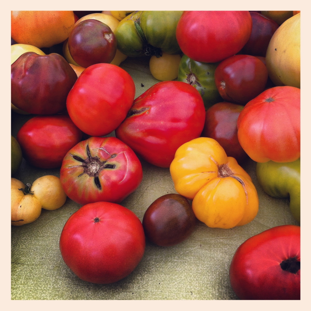 Heirloom Tomatoes, Union Square Farmers Market