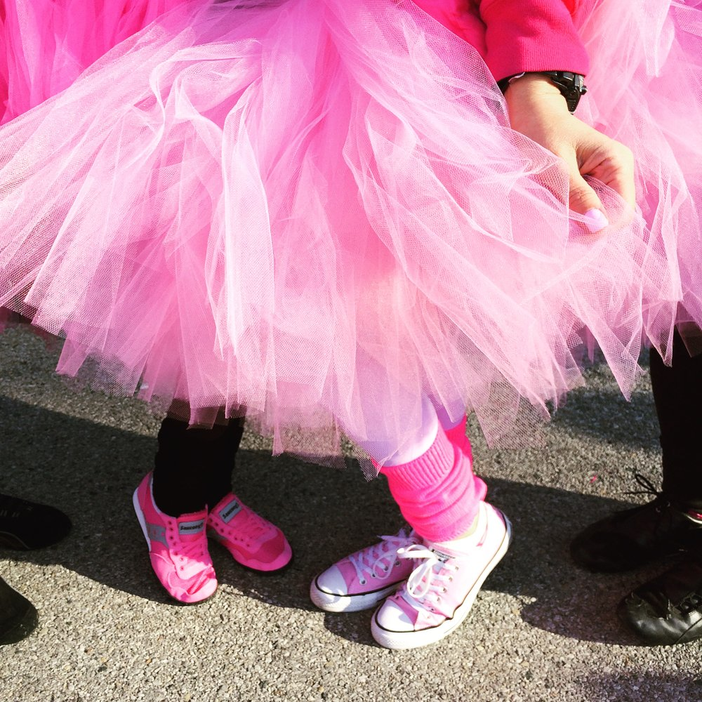 American Cancer Society breast cancer walk, Bronx