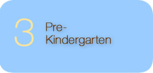 Pre-Kindergarten Return to Complete List of Platform Issues